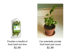 cost comparison between grocery store basil and a basil plant